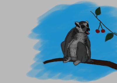 lemur-localcolor