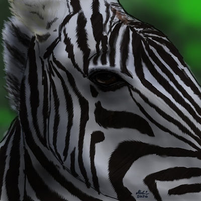 zebraface