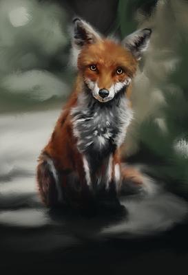 20200112 - fox - 3) day 1