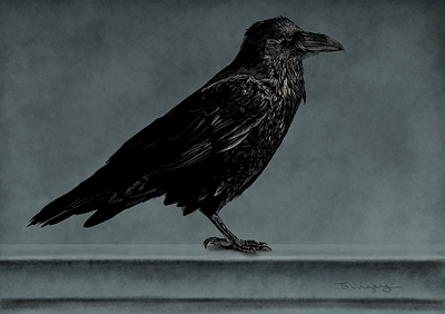 Finished-Raven-small