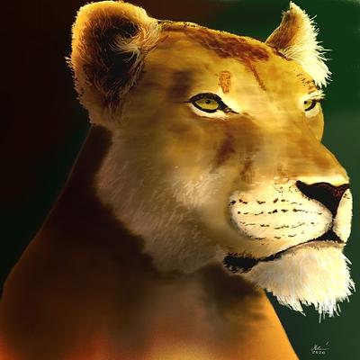 lioness-portrait