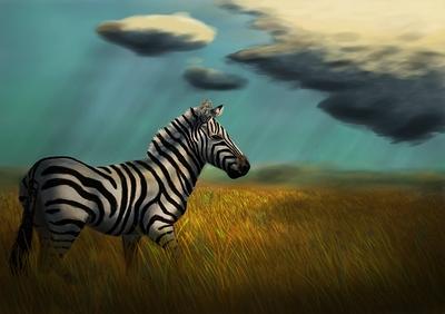 zebra-details-04