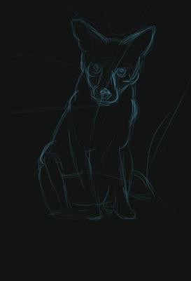 20200112 - fox - 1) sketch