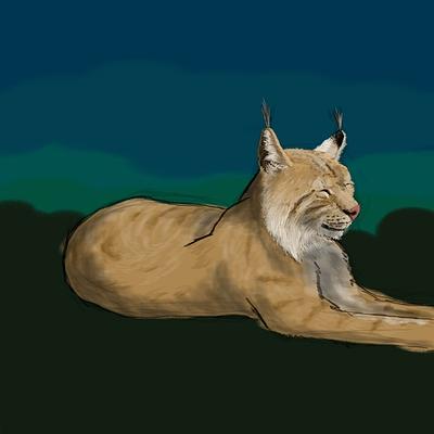 sleepy-lynx-01