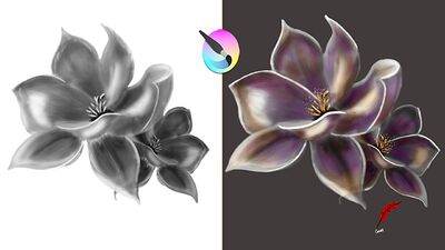 Video greyscale to color sept 2021