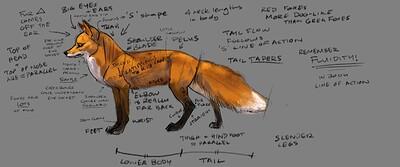 fox_studies3