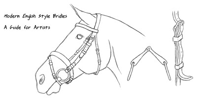 bridle_cover