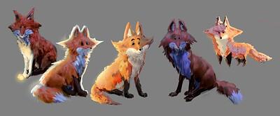 fox_explorations