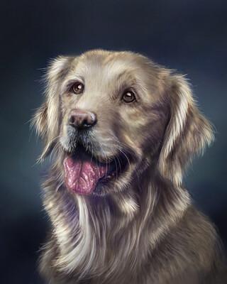dog one brush1080